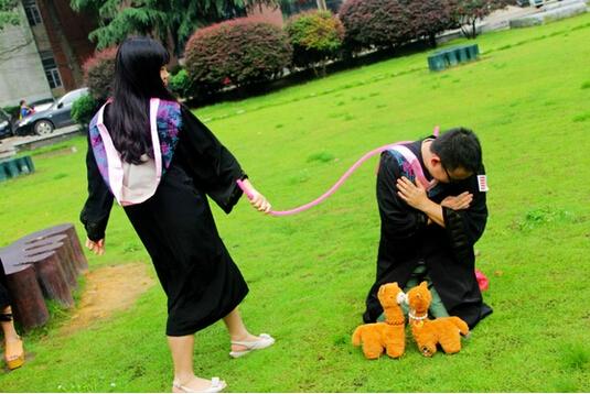 毕业图片的寓意动物